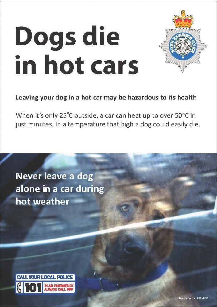 Nyp16 0157 Poster Dogs Die In Hot Cars
